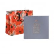 DOVANŲ RINKINYS: albumas + lipdukai + dovanų maišelis